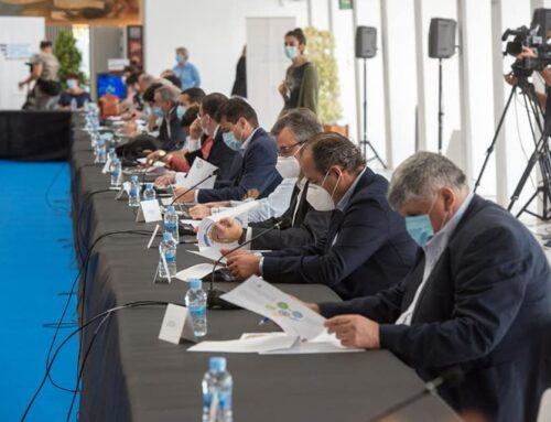 UEPAL presente en la constitución de la Comisión de reconstrucción económica del Ayuntamiento de Alicante